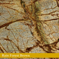 Rain Forest Brown
